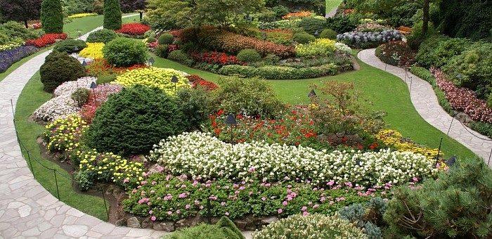 Ogród – co zrobić by cieszył przez cały rok?